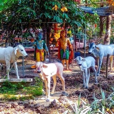 Shri Krishan Laddu Gopal