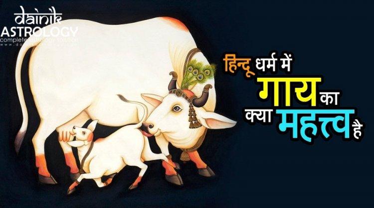 हिन्दू धर्म में गाय का क्या महत्व है?